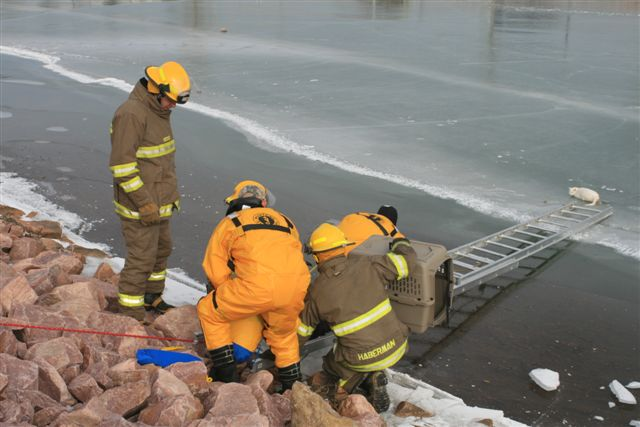 Larry Nickles/Yankton Fire Department The Yankton Fire Department, as well as Yankton Search and Rescue, saved a cat that had frozen to the ice on a pond Friday morning.
